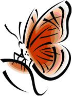 papillons volé (Antilles)